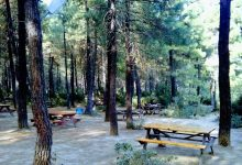 Photo of Aydos Yeşil Vadi Piknik Alanı