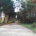 Çilingöz Tabiat Parkı Fotoğrafları (6)