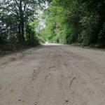 İğneada Longoz Ormanları Parkı (3)
