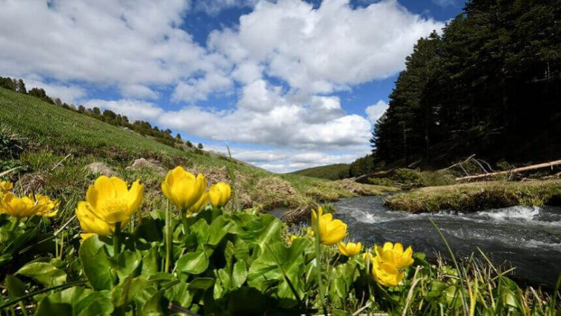 İlkbahar da Gidilecek Yerler (10)