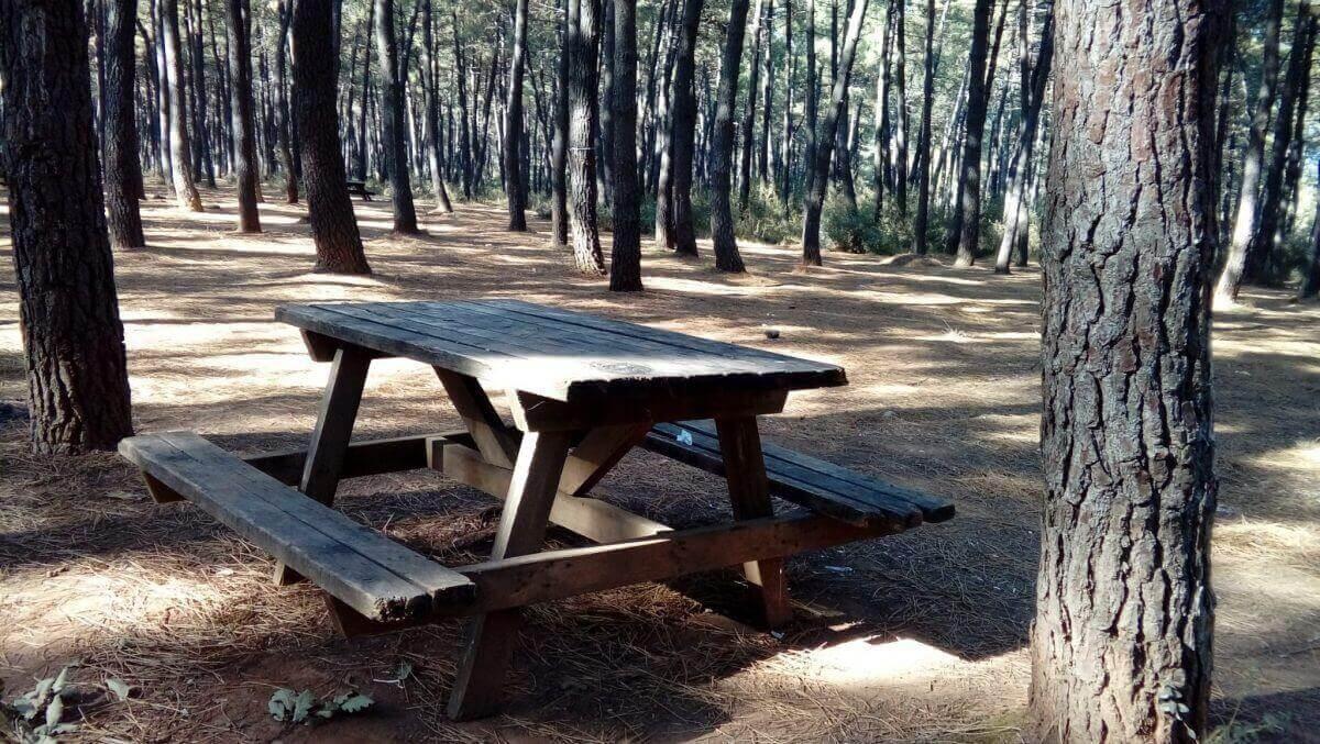 Aydos Ormanı Masalar