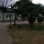 Edirne Gezi Fotoğrafları (14)