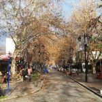 Edirne Gezi Fotoğrafları (33)