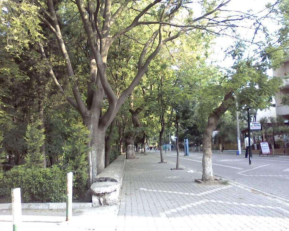 Kaplıcalar Caddesi Yaz