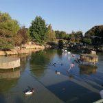 Polonezköy Hayvanat Bahçesi (12)