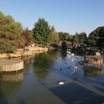 Polonezköy Hayvanat Bahçesi (13)