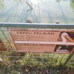 Polonezköy Hayvanat Bahçesi (17)