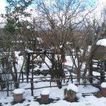 Kışın Polonezköy (5)