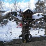 Kışın Polonezköy (6)