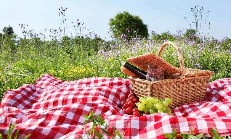 Anadolu Yakası Piknik Alanları (1)