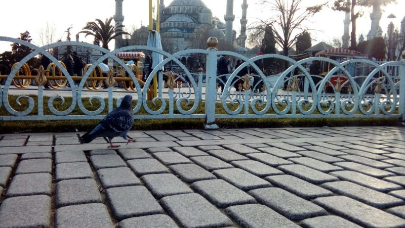 Sultanahmet Camii Fotoğrafları