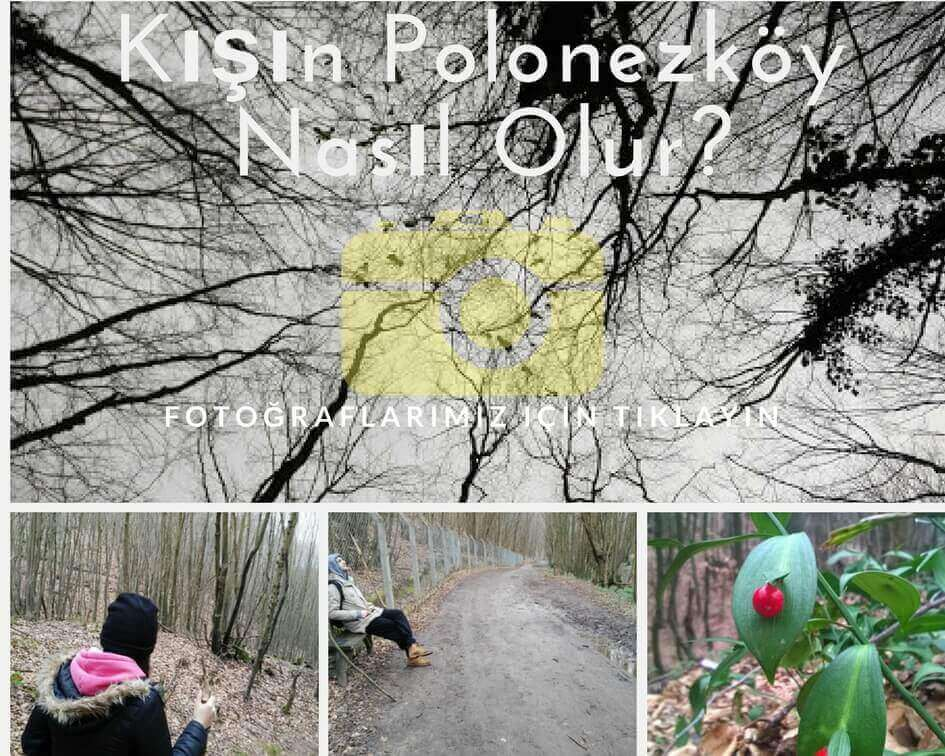 Kışın polonezköy nasıl olur fotoğrafları