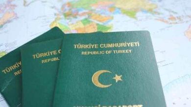 Photo of Yeşil Pasaport Nedir? Kimlere Verilir?